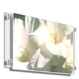 A3 Landscape Wall Mounted Poster Holder