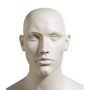 Male Mannequin Head 804