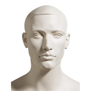 Male Mannequin Head 823